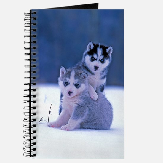 Husky puppies at play Journal