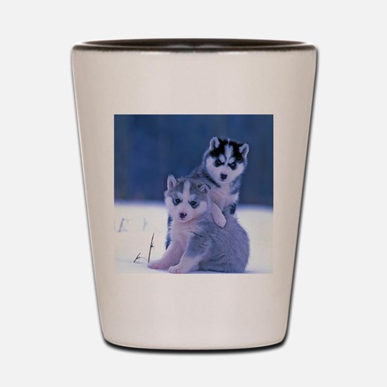 Funny Siberian Shot Glass