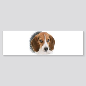 Beagle Close Up Sticker (Bumper)