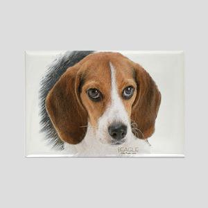 Beagle Close Up Rectangle Magnet Magnets