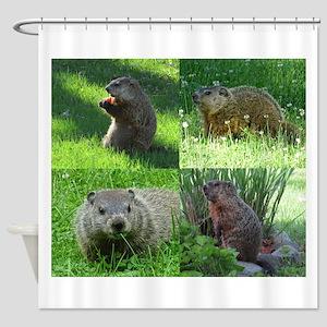 Groundhog Medley Shower Curtain