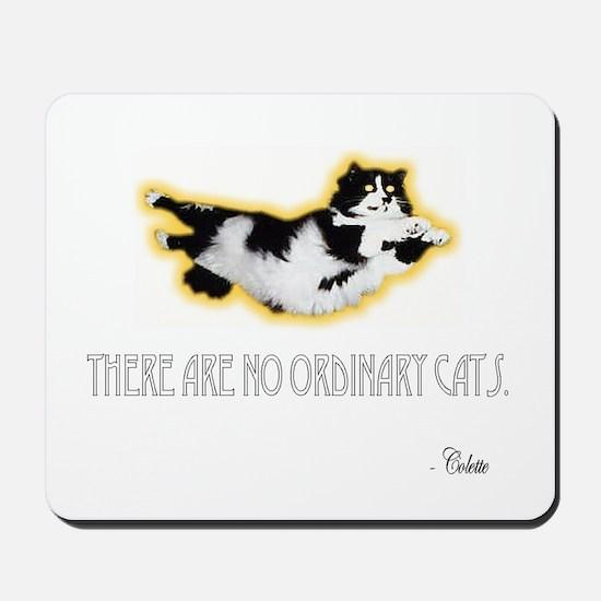 No Ordinary Cats Mousepad