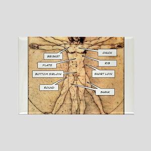 Da Vinci Meat Rectangle Magnet