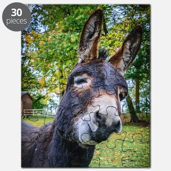 Cute Mule Puzzle