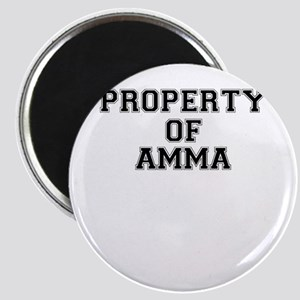Property of AMMA Magnets