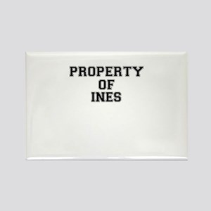 Property of INES Magnets