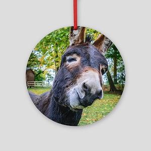 Donkey Funny Smiling Round Ornament