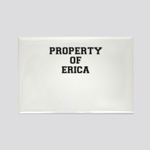 Property of ERICA Magnets