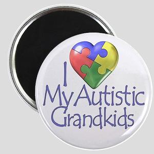 My Autistic Grandkids Magnet
