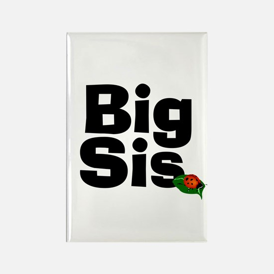 Big Sister Ladybug Rectangle Magnet