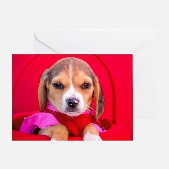 Cute Beagle valentine Greeting Card