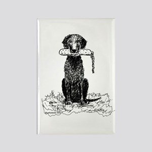 Curly-Coated Retriever with Bumper Rectangle Magne