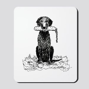 Curly-Coated Retriever with Bumper Mousepad