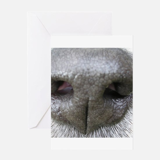 dog nose Greeting Cards