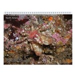 Crustaceans of the Pacific North 2013 Calendar v2