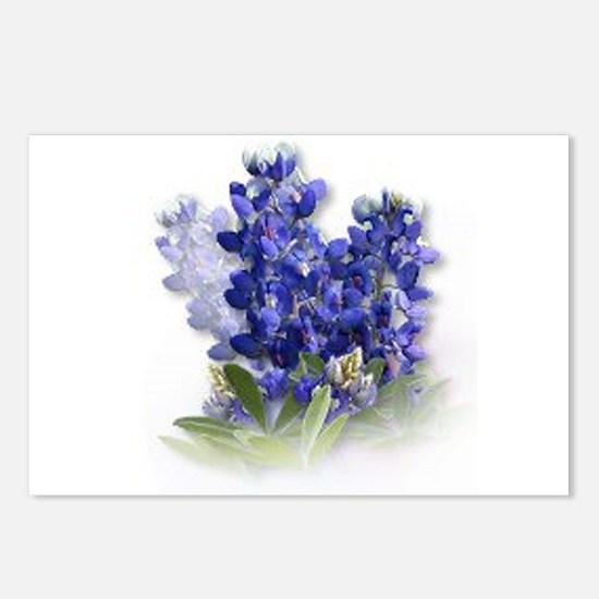 Bluebonnet Spray Postcards (Package of 8)