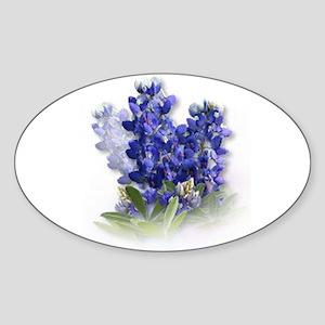 Bluebonnet Spray Oval Sticker