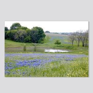 Bluebonnet and Pond Postcards (Package of 8)