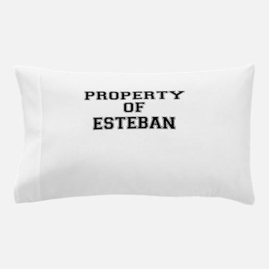 Property of ESTEBAN Pillow Case