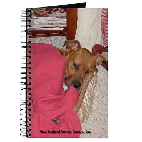Travis in Bed Journal
