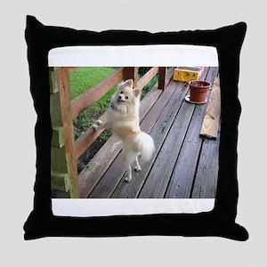 Posing Pomeranian Throw Pillow