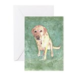Southern Yellow Lab Greeting Cards (Pk of 20)
