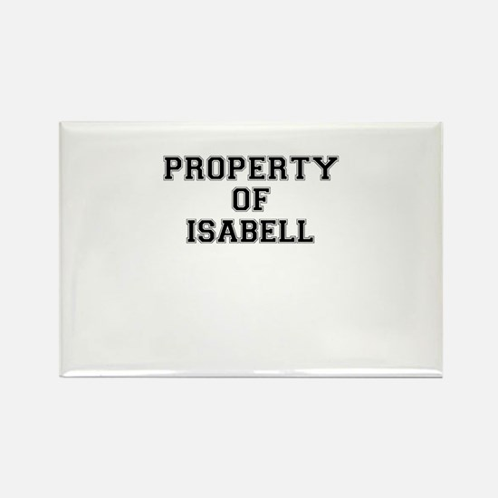 Property of ISABELL Magnets