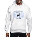 Italian Greyhounds In Heaven Hooded Sweatshirt