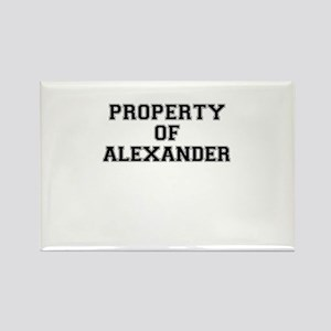 Property of ALEXANDER Magnets