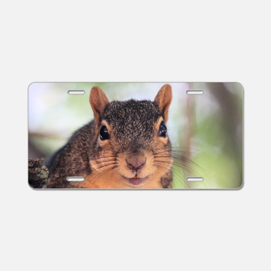 Funny Rodents Aluminum License Plate