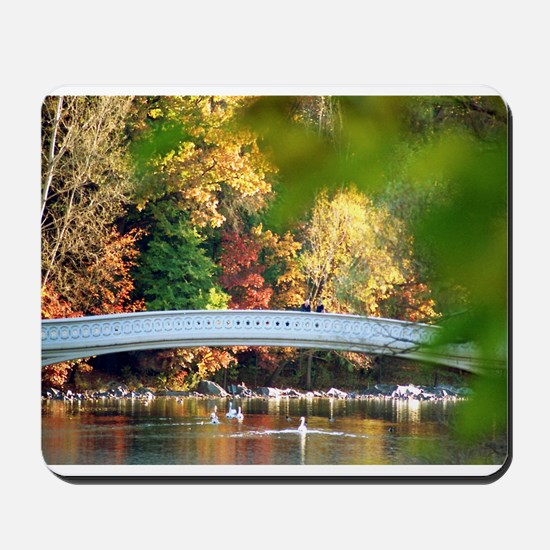 Autumn in New York Mousepad