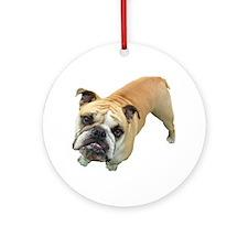 Handsome Boxer Ornament (Round)