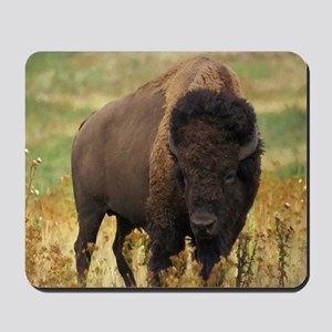 American Bison Mousepad