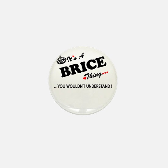 BRICE thing, you wouldn't understand Mini Button