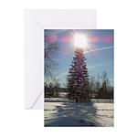 Christmas Star Greeting Cards (Pk of 20)