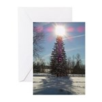 Christmas Star Greeting Cards (Pk of 10)