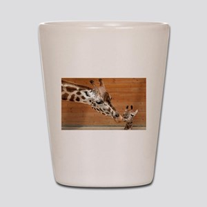 Kissing giraffes Shot Glass