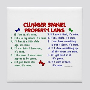 Clumber Spaniel Property Laws 2 Tile Coaster