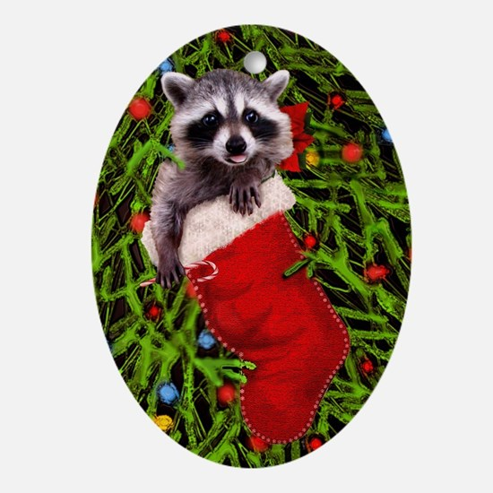 Raccoon in a Stocking Oval Ornament