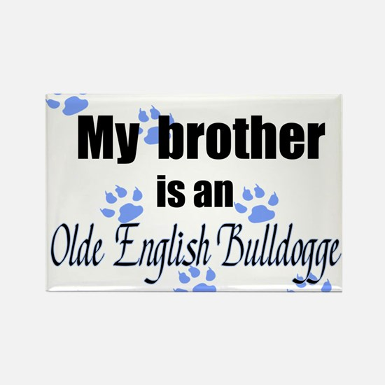 Olde English Bulldogge Brother Magnets
