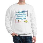 Succeed in Fun Sweatshirt