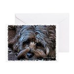 Smidgen's Greeting Cards (Pk of 20)