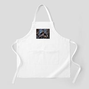 Smidgen's BBQ Apron