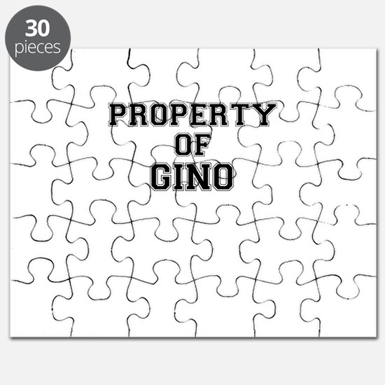 Property of GINO Puzzle