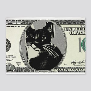Cash Cat 5'x7'Area Rug