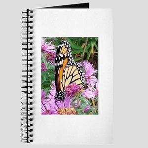 Monarch in Bee Balm Journal