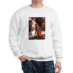 Accolade / Collie (s&w) Sweatshirt