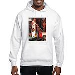 Accolade / Collie (s&w) Hooded Sweatshirt