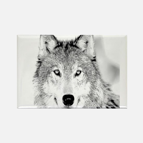 Cute White wolf Rectangle Magnet