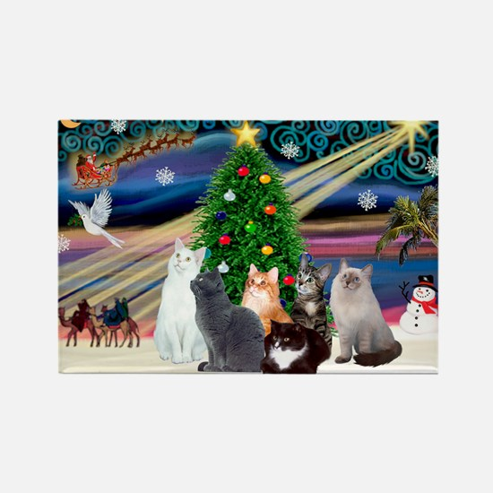 Xmas Magic / Six Cats Rectangle Magnet
